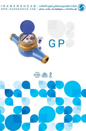 GS water meters
