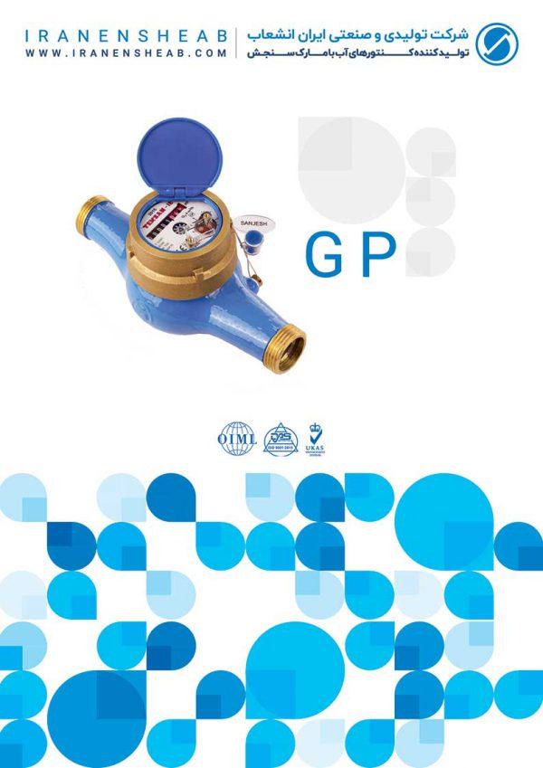 GS water meters